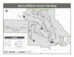 Byrne-Milliron Forest Trail Map