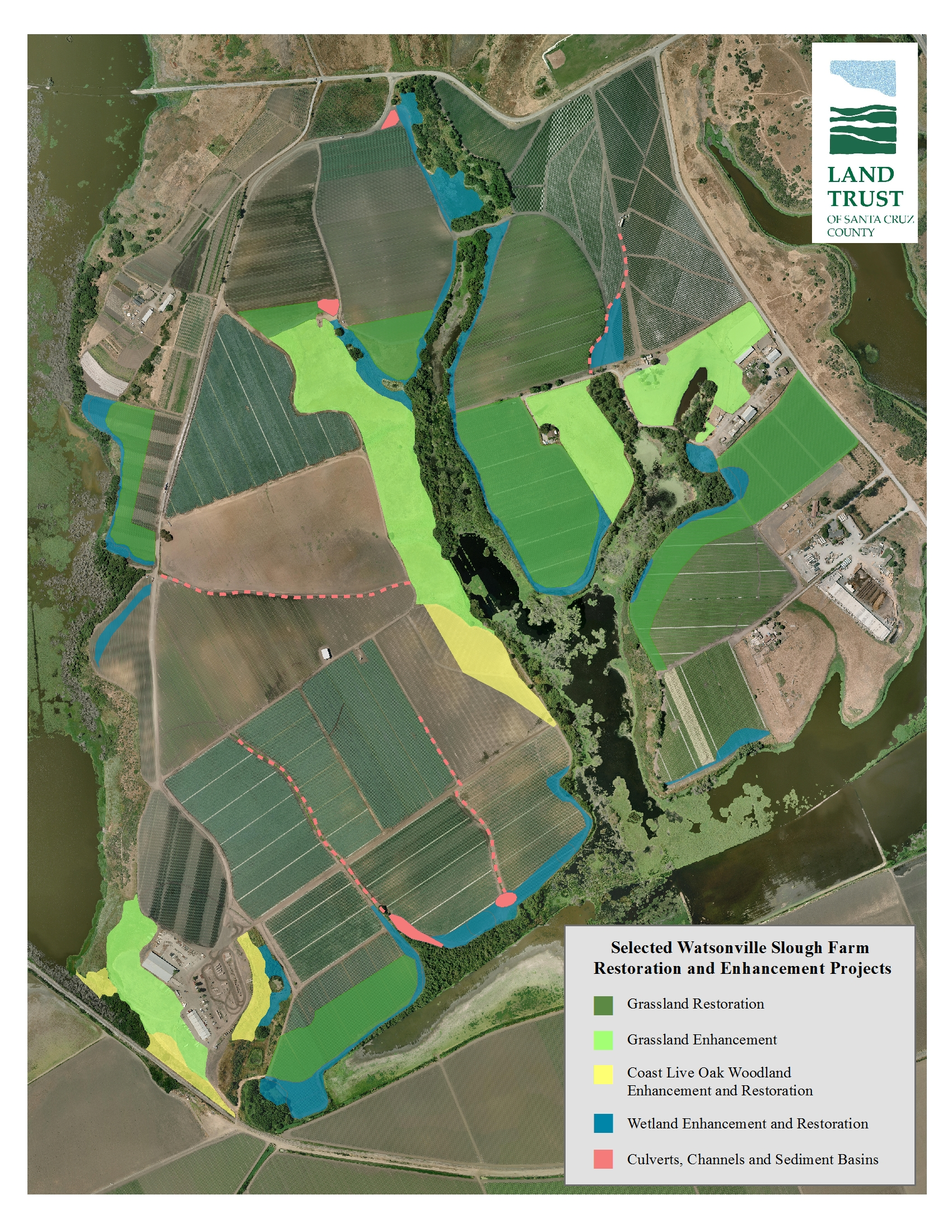 Watsonville Slough Farm Restoration And Enhancement Projects
