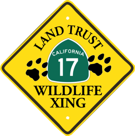 Wildlife Crossing Update – Risk and Rewards