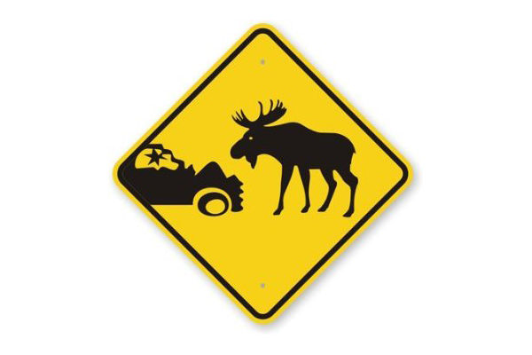 Roads, Reindeer, And Mountain Lions