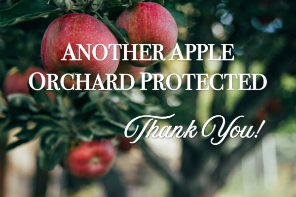 Pajaro Valley Orchard Protected